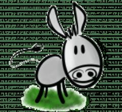 L'âne à Nath