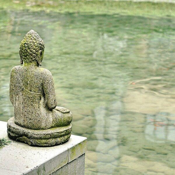 Développement personnel - méditations guidées